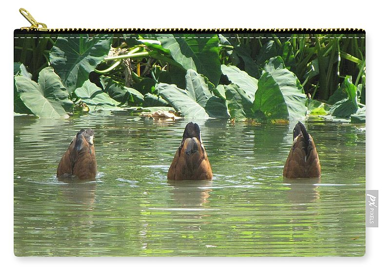 Ducks Carry-all Pouch featuring the photograph Dive by Beth Vincent