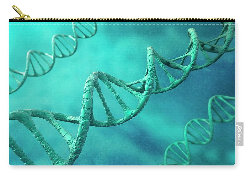 Color Image Carry-all Pouch featuring the digital art Dna Molecules, Artwork by Science Photo Library - Andrzej Wojcicki