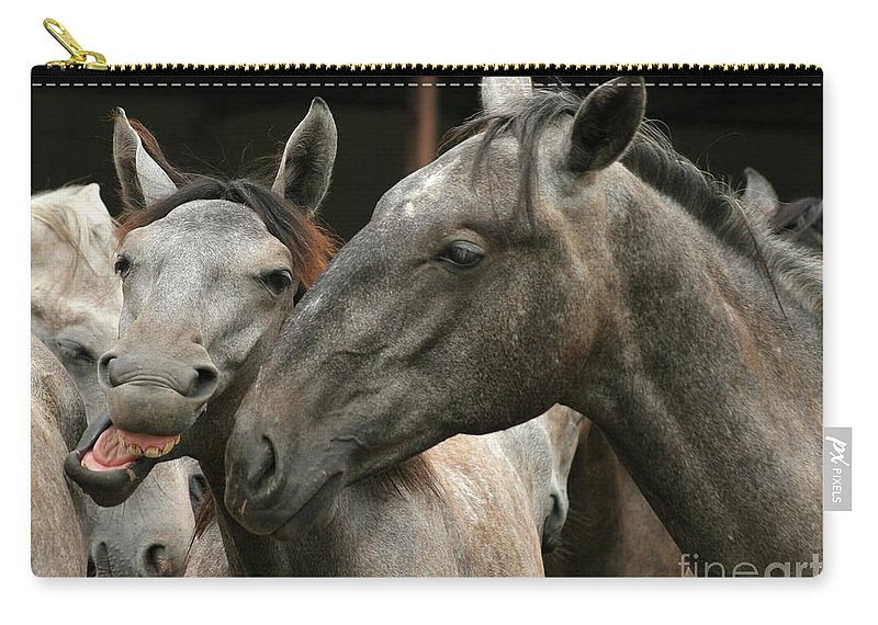 Horse Carry-all Pouch featuring the photograph Do I Have A Nice Smile by Angel Ciesniarska