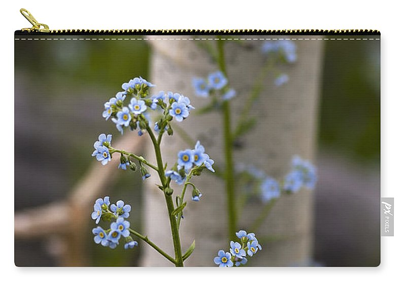 Colorado Carry-all Pouch featuring the photograph Do Not Forget Me by Kim Upshaw