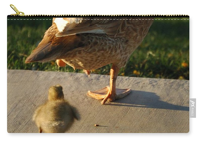 Feathers Carry-all Pouch featuring the photograph Do What I Do 27709 by Jerry Sodorff
