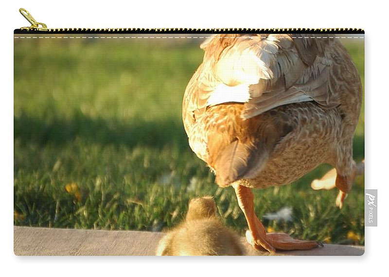 Feathers Carry-all Pouch featuring the photograph Do What I Do 27710 by Jerry Sodorff