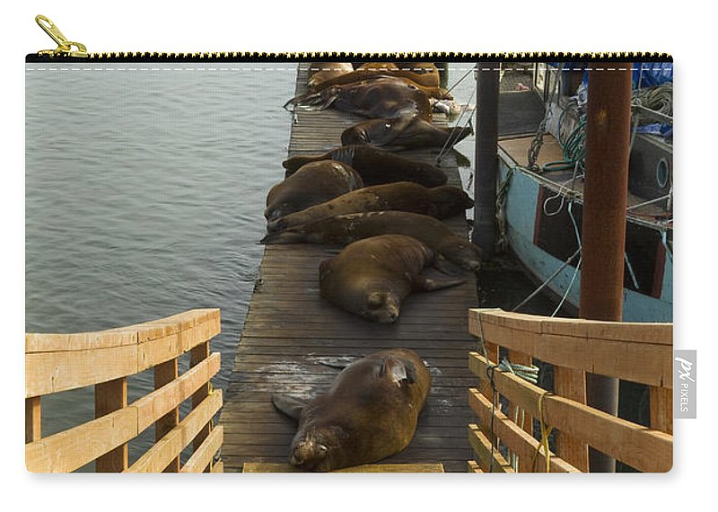Sea Carry-all Pouch featuring the photograph Dock Sea Lions Astoria Or 1 A by John Brueske