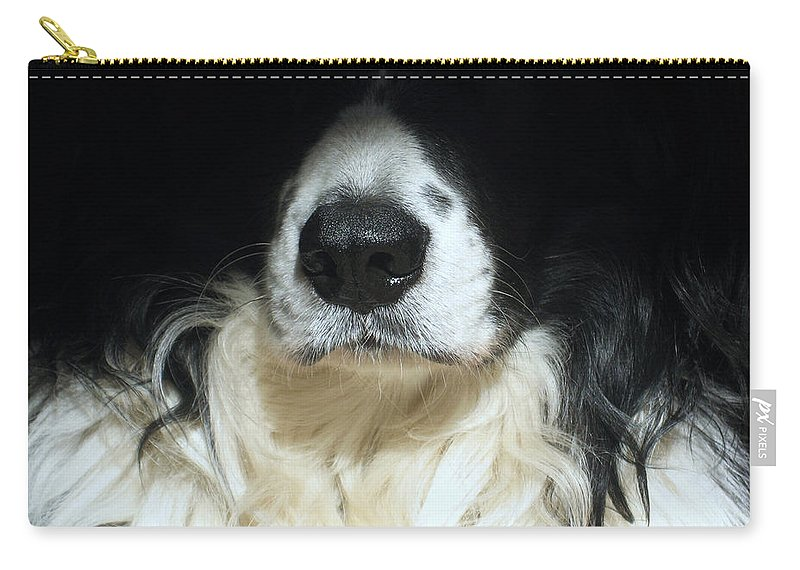 Black Carry-all Pouch featuring the photograph Dog Close Up by Steve Ball