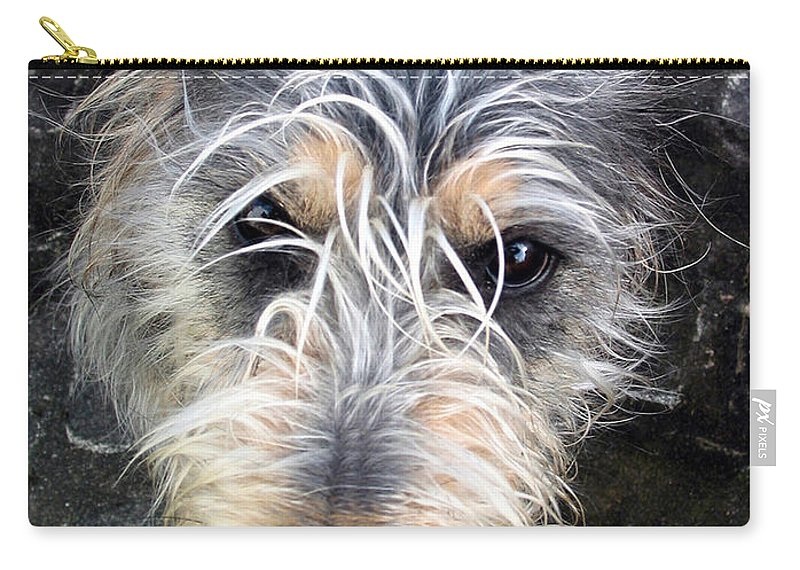 Dog Carry-all Pouch featuring the photograph Dog Head by Steve Ball