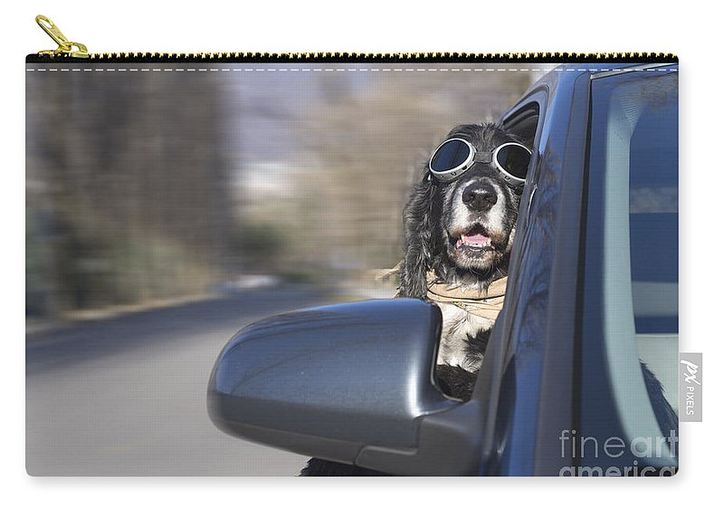 Dog Carry-all Pouch featuring the photograph Dog In The Car Window by Mats Silvan