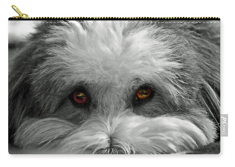 Dog Carry-all Pouch featuring the photograph Coton Eyes by Keith Armstrong