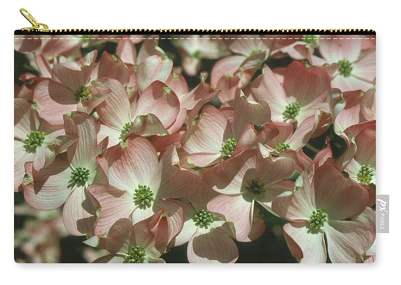 Dogwood Carry-all Pouch featuring the photograph Dogwood 1 by Andy Shomock