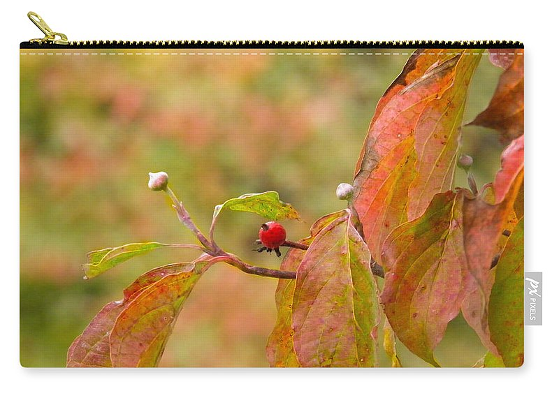 Berry Carry-all Pouch featuring the photograph Dogwood Berrie by Nick Kirby