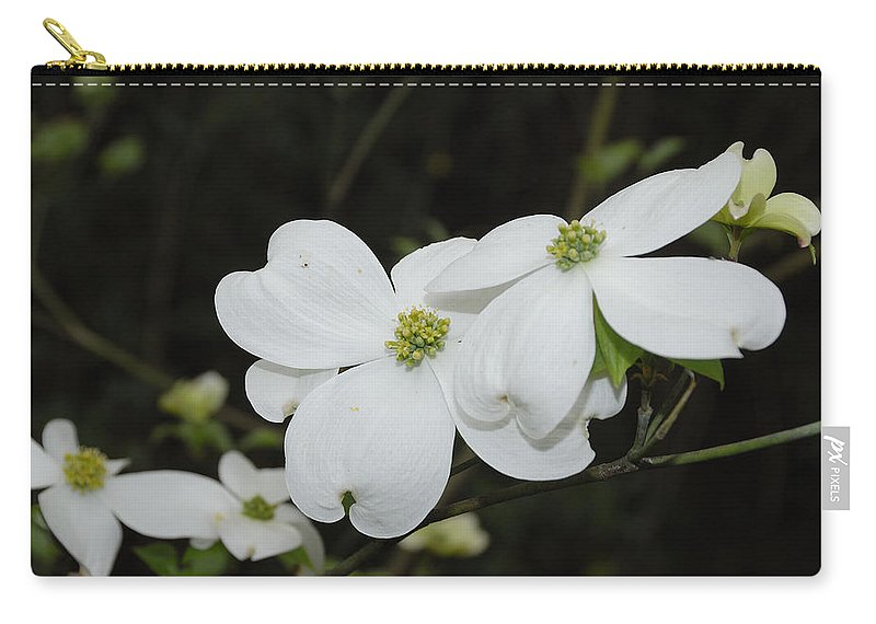 Dogwood Carry-all Pouch featuring the photograph Dogwood Tree Blooms by Charles Beeler
