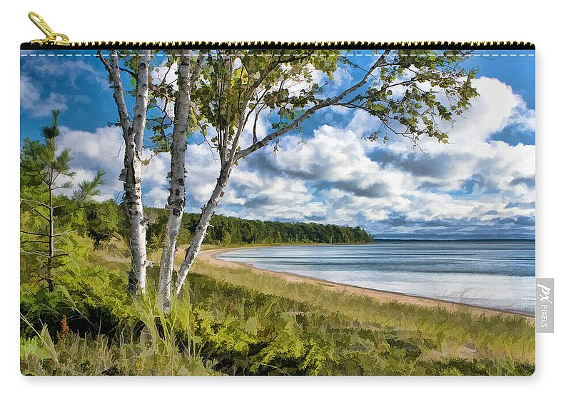 Door County Carry-all Pouch featuring the painting Door County Europe Bay Birch by Christopher Arndt