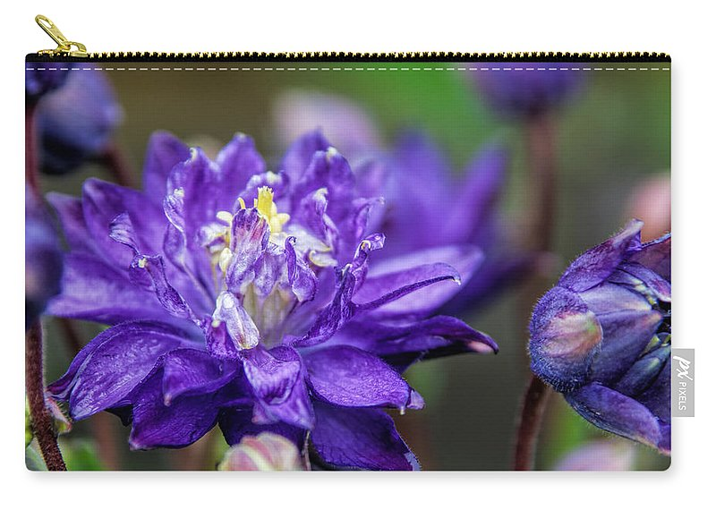 Denyse Duhaime Photography Carry-all Pouch featuring the photograph Double Blue Columbine Flower by Denyse Duhaime