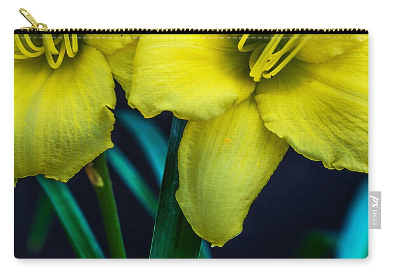 Yellow Carry-all Pouch featuring the photograph Double Pleasure by Elvis Vaughn