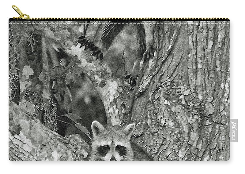 Racoons Carry-all Pouch featuring the digital art Double Trouble by DigiArt Diaries by Vicky B Fuller