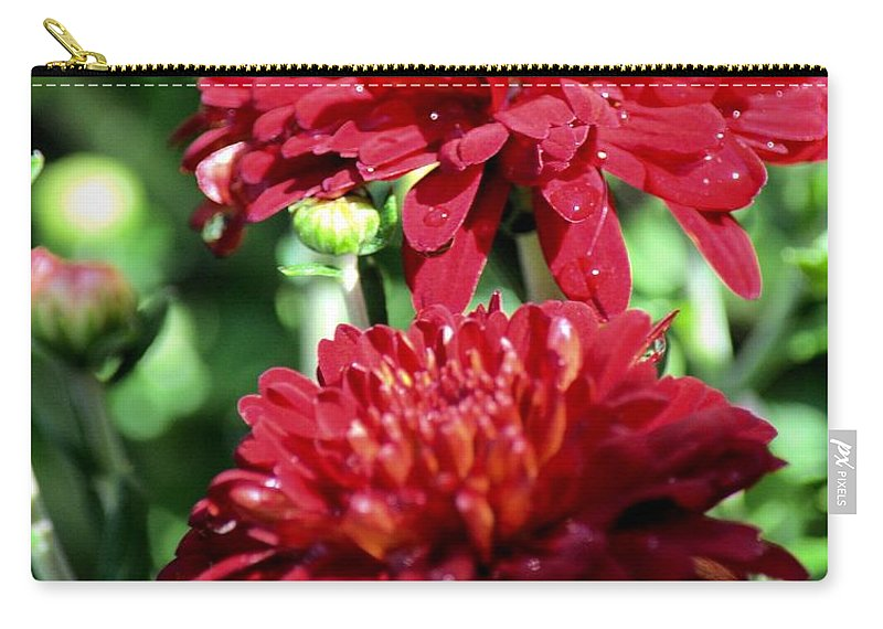 Doubled Red Mums Carry-all Pouch featuring the photograph Doubled Red Mums by Maria Urso