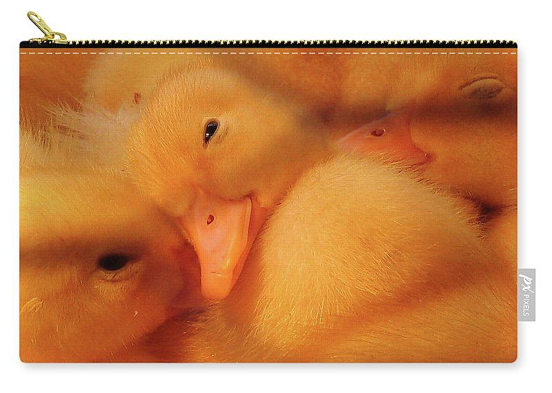Ducks Carry-all Pouch featuring the photograph Down Of Gold by Douglas Stucky