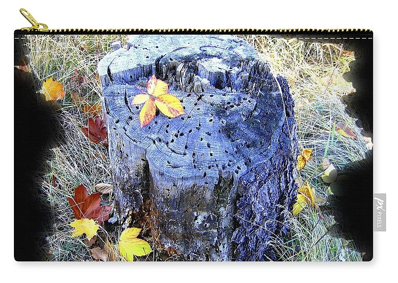 Down To Earth Beauty Carry-all Pouch featuring the photograph Down To Earth Beauty by Will Borden