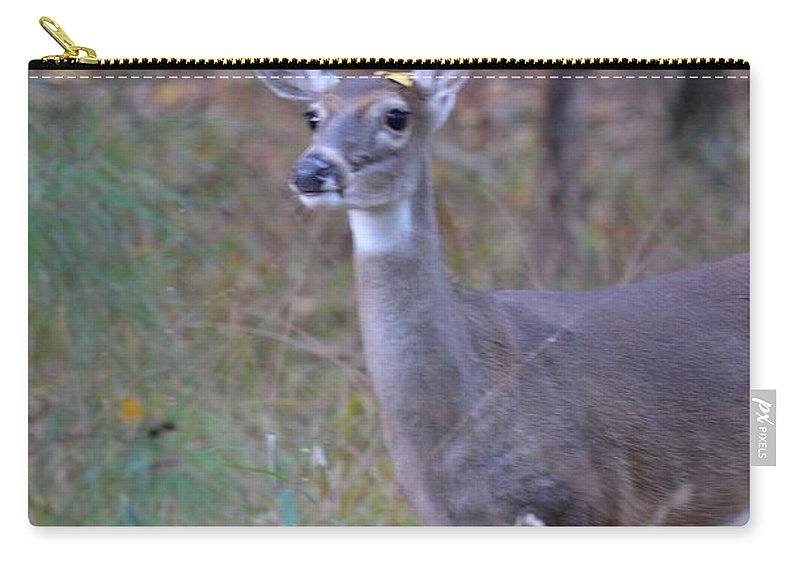 Downwind Carry-all Pouch featuring the photograph Downwind by Maria Urso