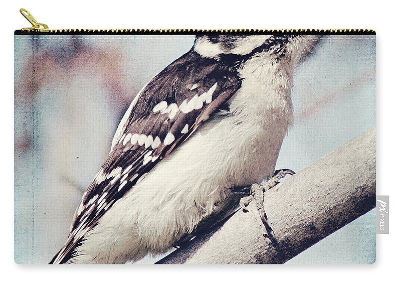Woodpecker Carry-all Pouch featuring the photograph Downy On Blue by Pam Holdsworth