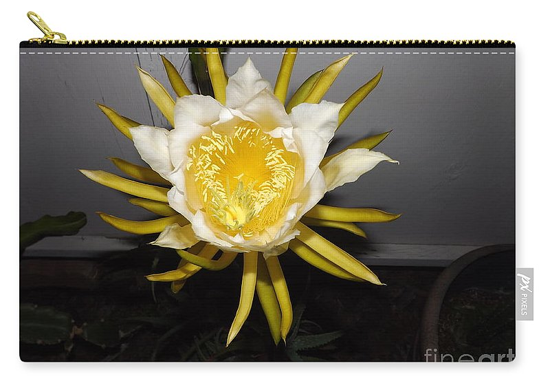 Flowers Carry-all Pouch featuring the photograph Dragon Fruit Blooming At Night I by Jussta Jussta