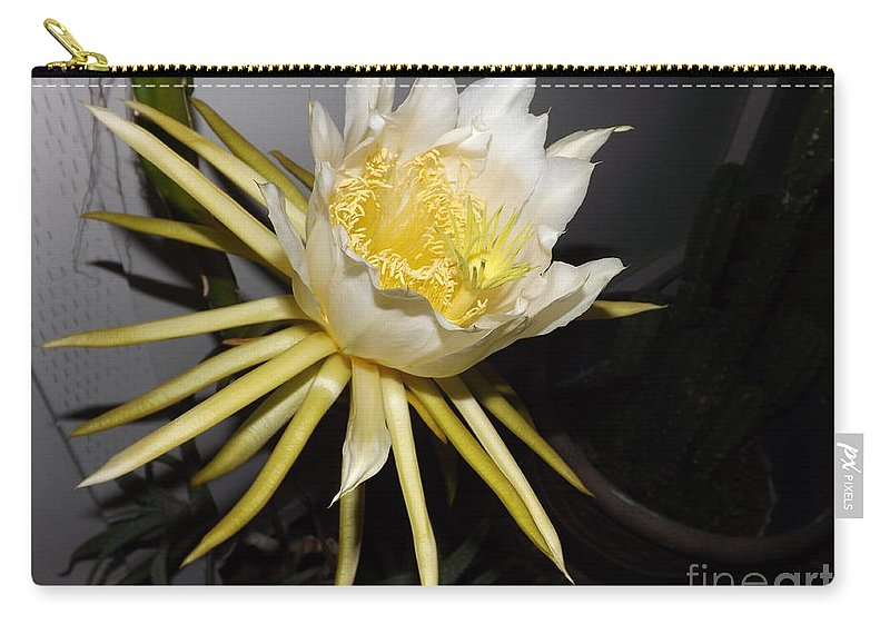 Flower Carry-all Pouch featuring the photograph Dragon Fruit Blossom II by Jussta Jussta