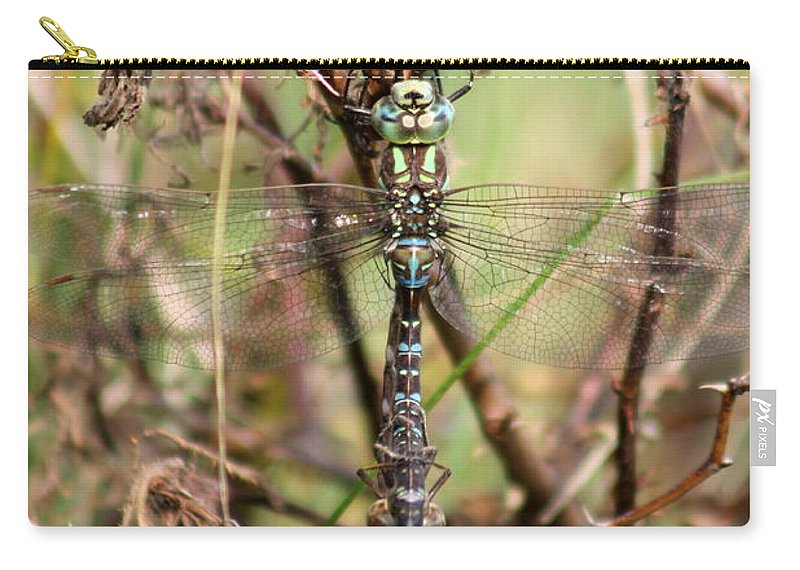 Dragonflies Carry-all Pouch featuring the photograph Dragonflies by Renee Croushore