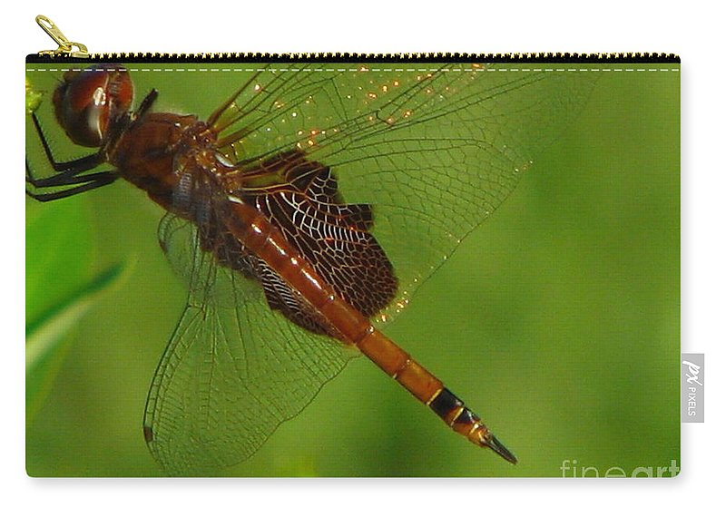 Art For The Wall...patzer Photographydragonfly Carry-all Pouch featuring the photograph Dragonfly Art 2 by Greg Patzer
