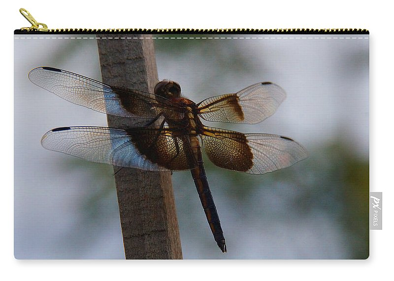 Dragonfly Carry-all Pouch featuring the photograph Dragonfly At Rest by Mick Anderson