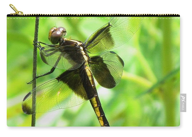 Widow Skimmer( Libellula Luctuosa )dragonfly Carry-all Pouch featuring the photograph Dragonfly Female Widow Skimmer by Eric Noa