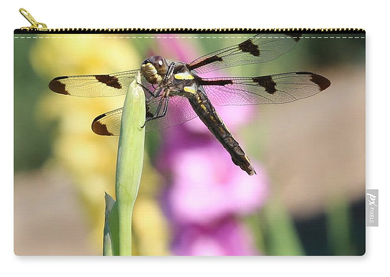 Dragonfly Carry-all Pouch featuring the photograph Dragonfly Gladiolus by Carol Groenen