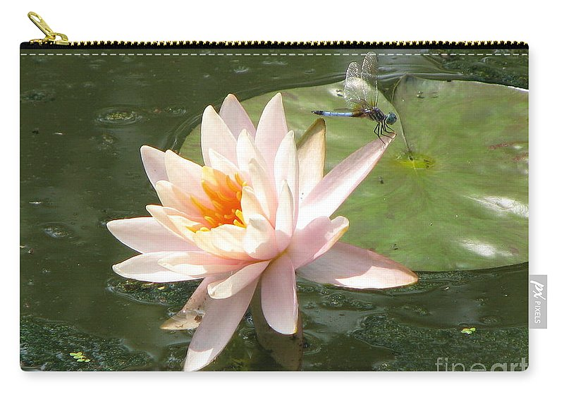 Dragon Fly Carry-all Pouch featuring the photograph Dragonfly Landing by Amanda Barcon