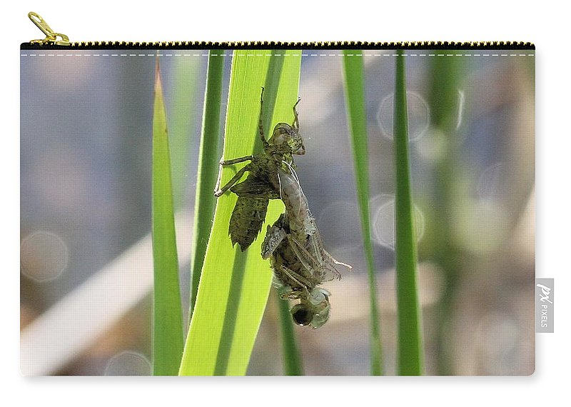 Dragonfly Carry-all Pouch featuring the photograph Dragonfly Metamorphosis - First In Series by Doris Potter