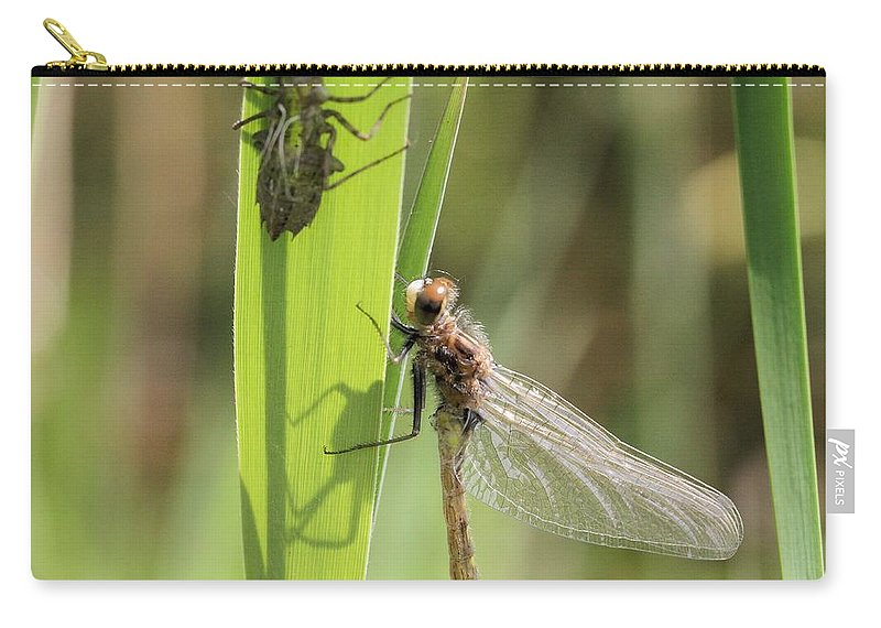 Dragonfly Carry-all Pouch featuring the photograph Dragonfly Metamorphosis - Ninth In Series by Doris Potter