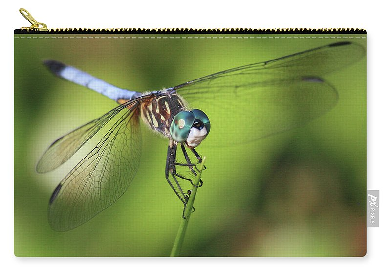Dragonfly Carry-all Pouch featuring the photograph Dragonfly Square by Carol Groenen