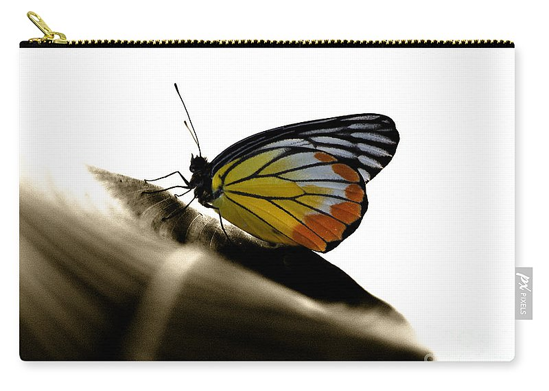 Butterfly Photo Carry-all Pouch featuring the photograph Drama Queen by Nola Lee Kelsey