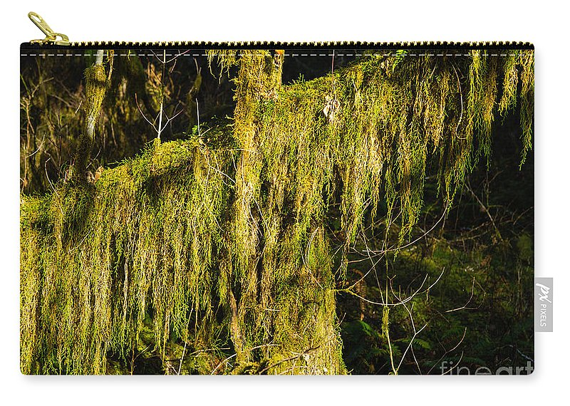 Draperies Carry-all Pouch featuring the photograph Draperies 2 by Tracy Knauer