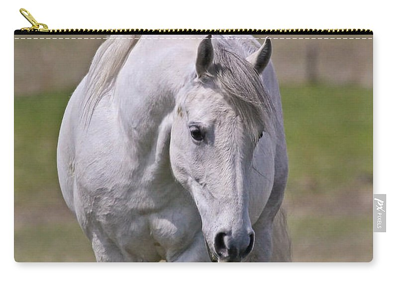 Horses Carry-all Pouch featuring the photograph Lipizzane Dreaming by Athena Mckinzie
