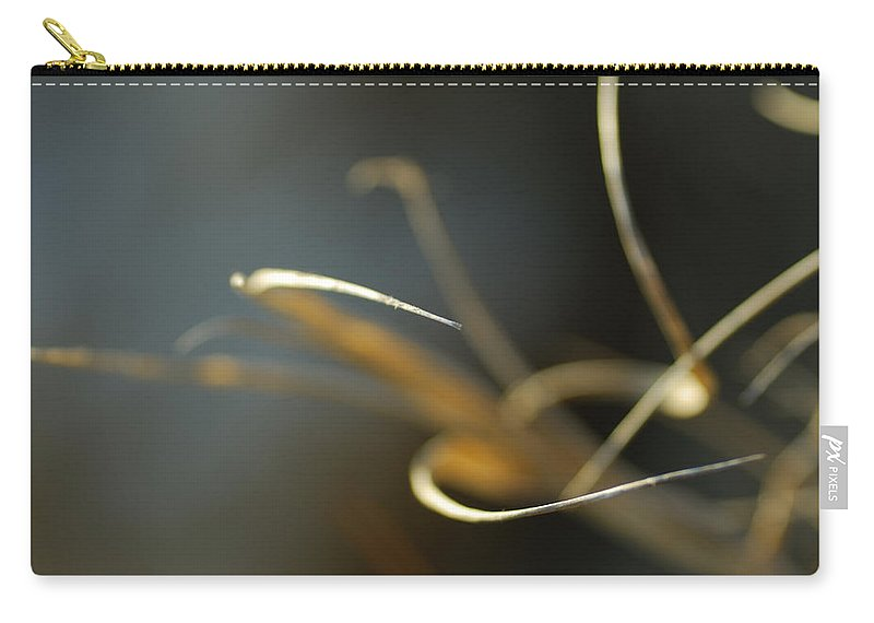Nature Carry-all Pouch featuring the photograph Dreams by Guido Montanes Castillo