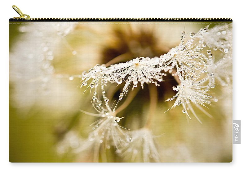 Dandelion Carry-all Pouch featuring the photograph Dreamy Dandelion by Shane Holsclaw
