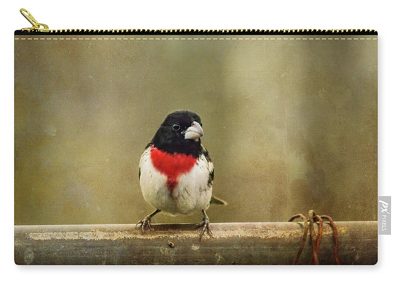 Rose-breasted Grosbeak Carry-all Pouch featuring the photograph Dressed In My Best by Susan Capuano