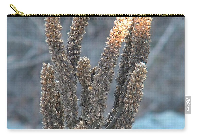 Dried Carry-all Pouch featuring the photograph Dried Plant by Nathanael Smith