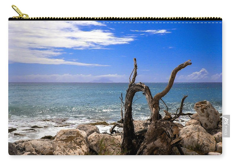 Driftwood Carry-all Pouch featuring the photograph Driftwood Island by Karen Wiles