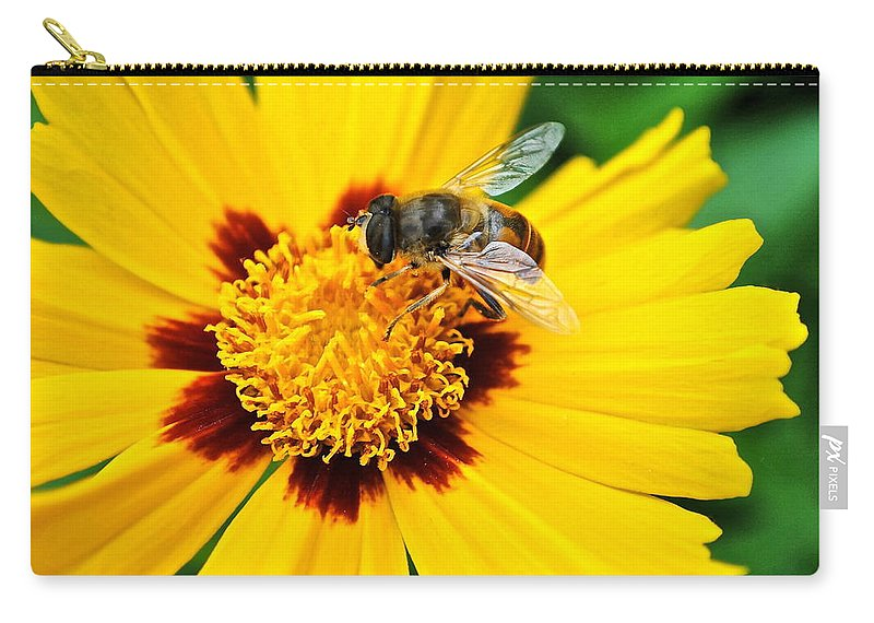 Queen Carry-all Pouch featuring the photograph Drone Bee by Frozen in Time Fine Art Photography