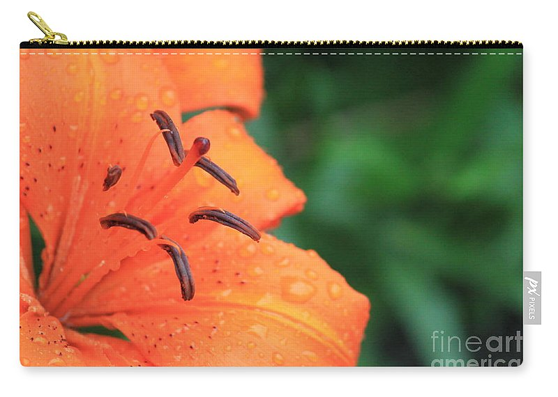 Orange Carry-all Pouch featuring the photograph Droplets On Tiger Lily by Jennifer E Doll