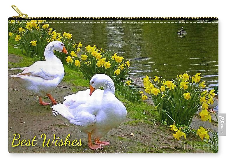 White Ducks Carry-all Pouch featuring the photograph Ducks And Daffodils Greeting by Joan-Violet Stretch