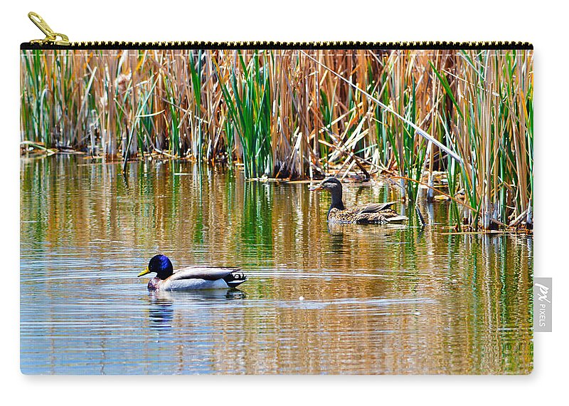 Duck Carry-all Pouch featuring the photograph Ducks In A Marsh by Brent Dolliver