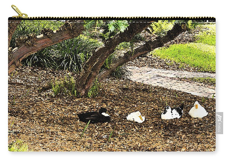 Fresco Carry-all Pouch featuring the photograph Ducks Resting Fresco by Csaba Friss
