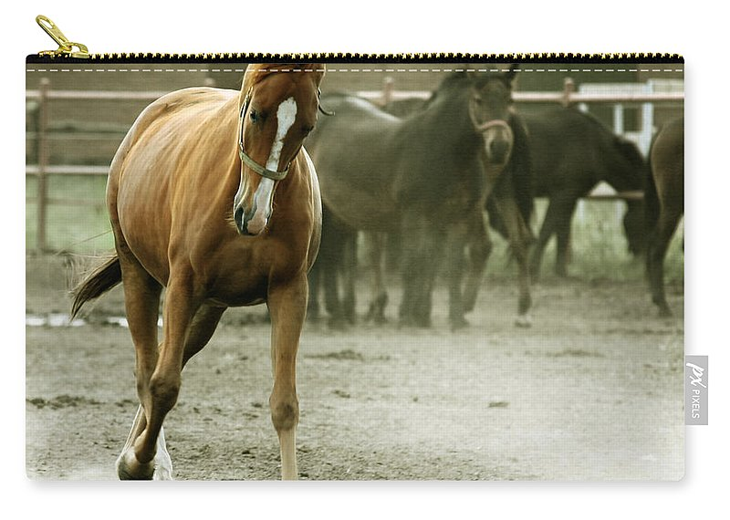 Paddock Carry-all Pouch featuring the photograph Dusty Paddock by Angel Ciesniarska