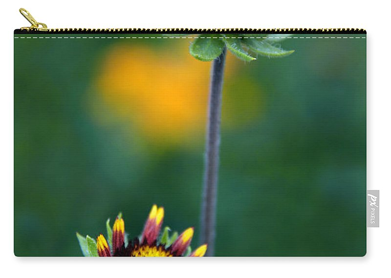 Flowers Carry-all Pouch featuring the photograph Dynamic Duo by Jessica Jenney