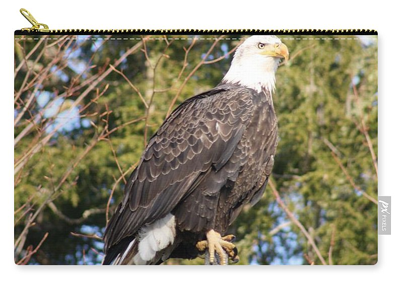 Eagle Carry-all Pouch featuring the photograph Eagle 1979 by Joseph Marquis
